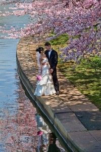 beautiful scenery of a destination wedding