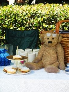 teddy bear picnic for adults