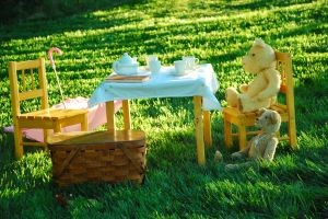 teddy bear picnic in a beautiful garden